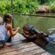 Shikwari Bush Lodge – Hoedspruit 3 Night Package
